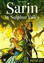Sarin in Sulphur Valley + CD - Benni Bodker