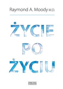 Życie po życiu buy polish books in Usa