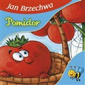 Pomidor  in polish
