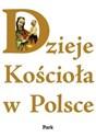 Dzieje Kościoła w Polsce  polish usa
