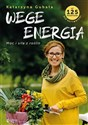 Wege energia to buy in USA