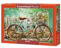 Puzzle Beautiful Ride 500 books in polish