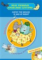 Cathy the Mouse is Sad at Night Polish Books Canada