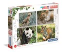 Puzzle Supercolor Progressive Wildlife  20+60+100+180 -